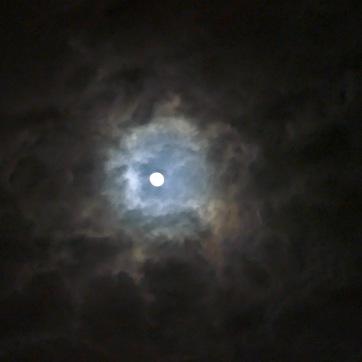 dark moon file 2